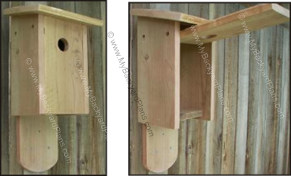 Free Bluebird House Plans How to Build a Bird House